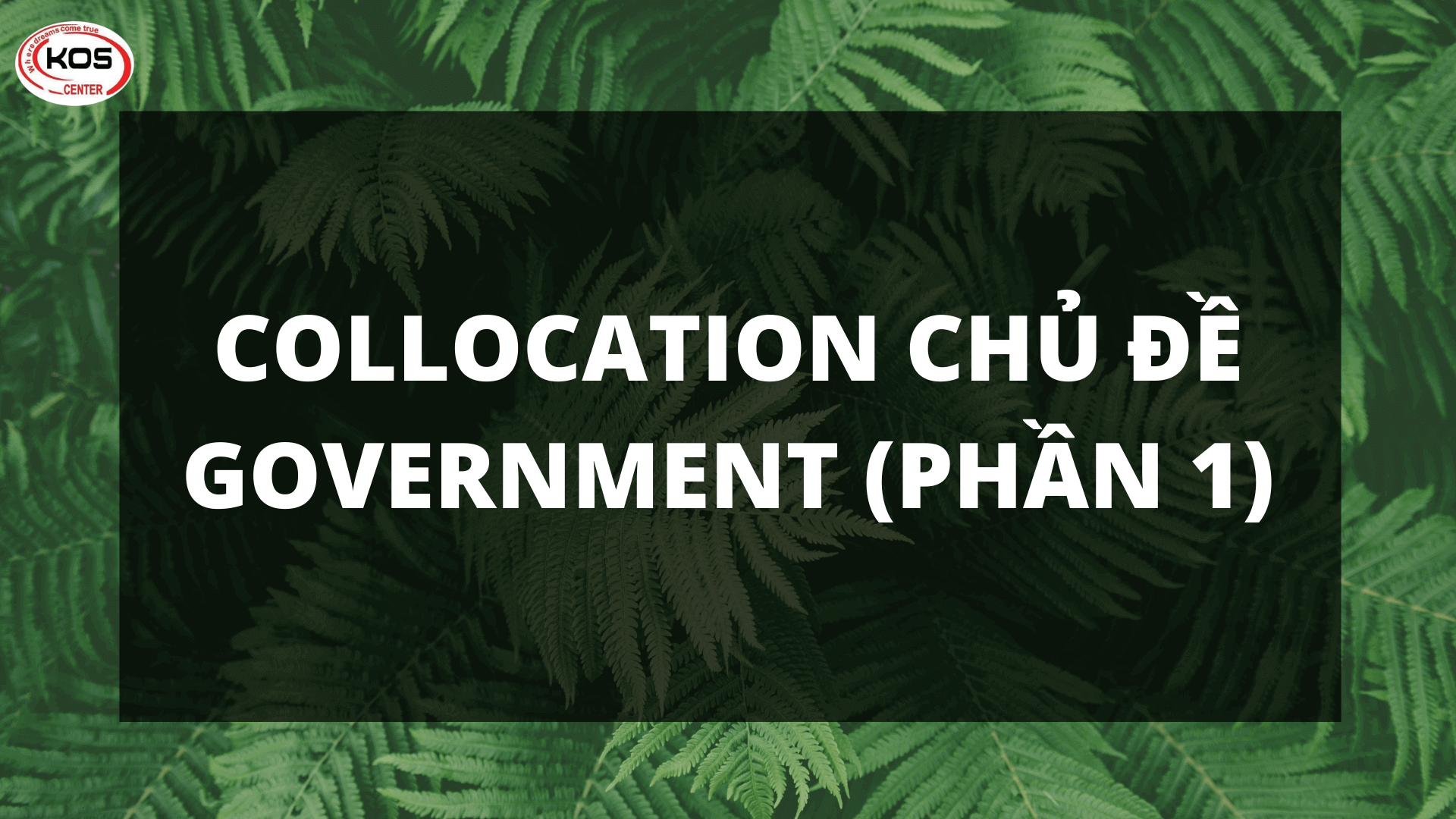 Collocation chủ đề Government