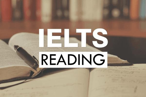 học ielts reading